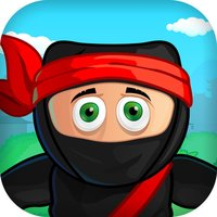 Ninja Crossing Hero
