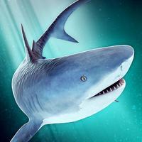 World of Sharks | Fun Deep Sea Shark Simulator Game For Free