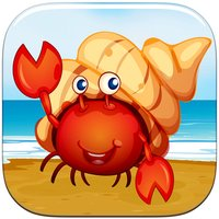 Where's Hermit the Crab? Don't Tap the Empty Shell