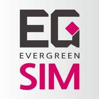 EG Sim Card