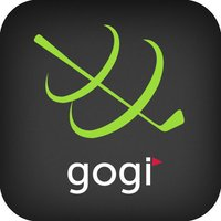 GOGI Swing Pro