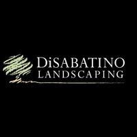 DiSabatino Landscaping, Inc.