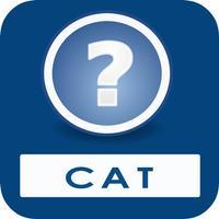 CAT Quiz Questions