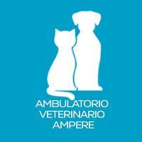 AMBULATORIO VETERINARIO AMPERE
