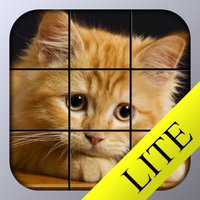 Kitty Tiles Lite - Cat Puzzle