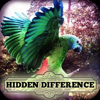 Hidden Difference - Aviary
