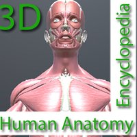 Human Anatomy Encyclopedia 3D
