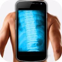 Simulator X-Ray Spine Back