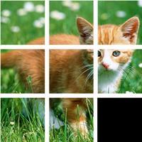 Jigsaw Animal