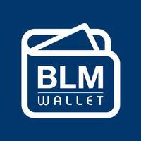 BLM Venture Capital
