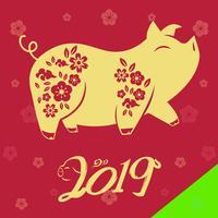 猪年运程特别版-2019最全大師运势预测