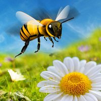 Honey Bee Attack Flying 3D Simulator Game- Fly to Kill Enemy Insects