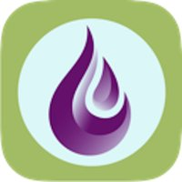 Field Guide to Young Living Essential Oils