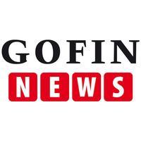 GOFIN NEWS dla Księgowych