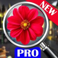 hidden object: The enchanted city Pro