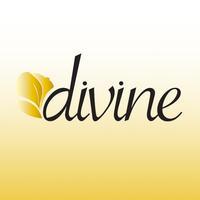 Divine Med Spa