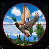 Safari jungle Bird hunting 3D