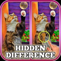 Hidden Difference: A Day with My Cat