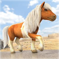 Little Pony Trails | My Cute Ponies Racing Game for Free
