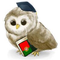 MTL Learn Portuguese