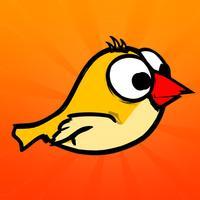 Amazing Bird Game