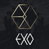 饭团-EXO   edition