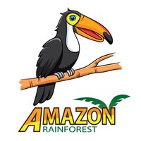 Colouring Me: Amazon Rainforest