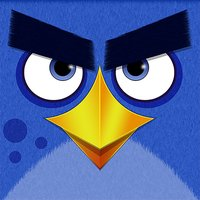 Fly Away: Bird