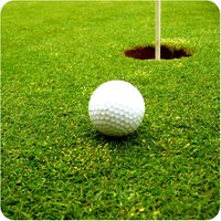 Crazy Golf Championship
