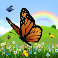 Coloring Book: Butterfly