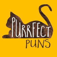 Purrfect Puns cat stickers