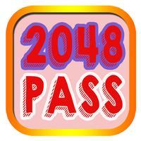 2048 PASS