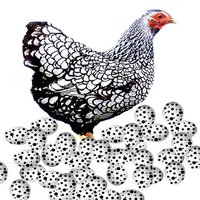 Virtual Chicken Fun
