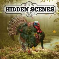 Hidden Scenes - Turkey Trot