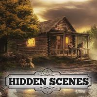 Hidden Scenes - Cabin Puzzles
