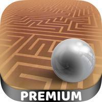 3D Labyrinth classic maze games - Pro