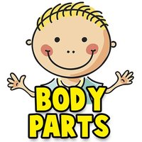 Learn Human Body Parts For Babies