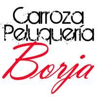Carroza Peluquería Borja