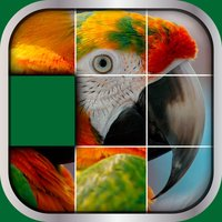 Animals Sliding Puzzle Game – Move and Match Pieces to Put Together Cute Pets Photos