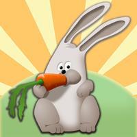 the little rabbit jump & run in island