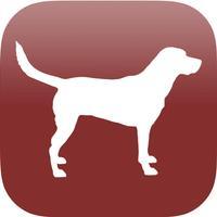 Dog Breed Scanner
