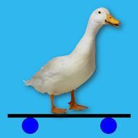 Duck Jump!