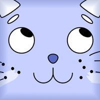 Runny Cat