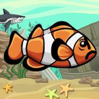 Dodgy Fish