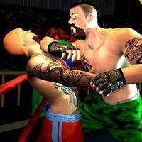 Wrestling Pro Fighting