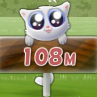 Cute Cat Long Jump!