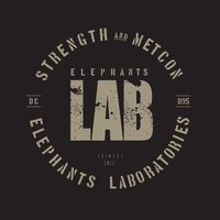 Elephants LAB