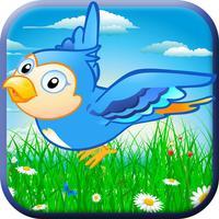 The Birds War HD