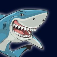 Data Shark AR