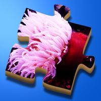 Super Jigsaws Marine Life